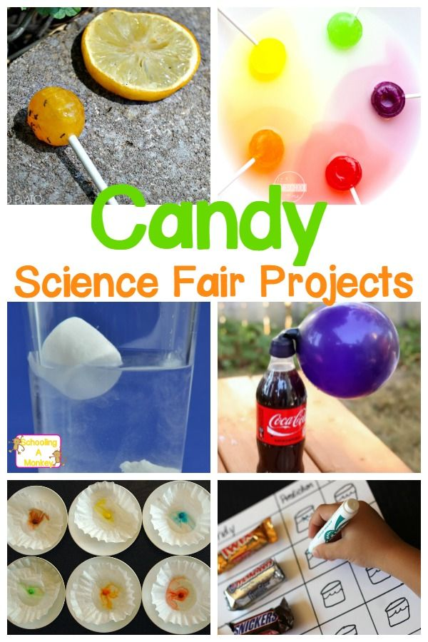 17 Best images about Science Fair Ideas on Pinterest ...
