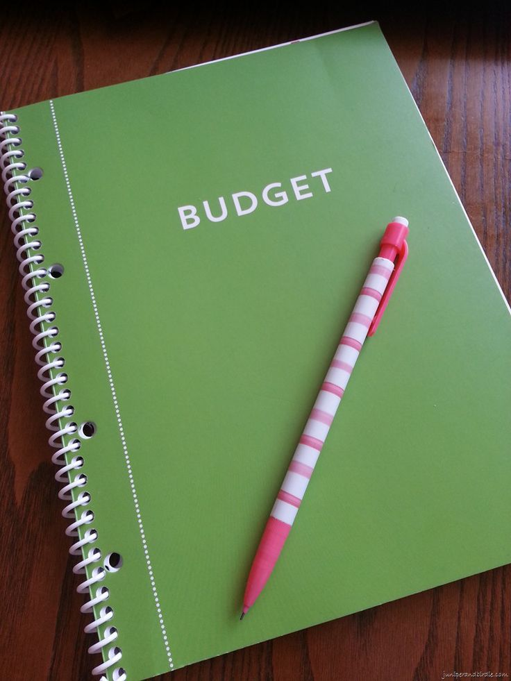 Michaels recollections budget book planner ideas