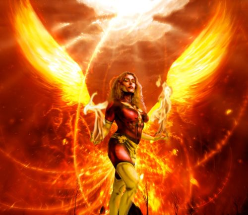290 Best Images About The Phoenix On Pinterest