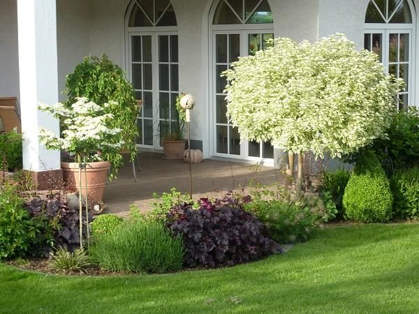 17 Best Images About Front Yard Landscaping Ideas On