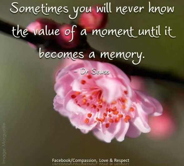 Sometimes you never know the value of a moment