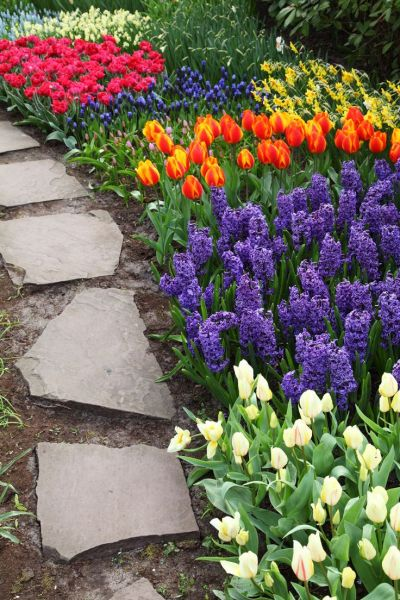 beautiful flower gardens pinterest 1000+ ideas about Flowers Garden on Pinterest | Flower