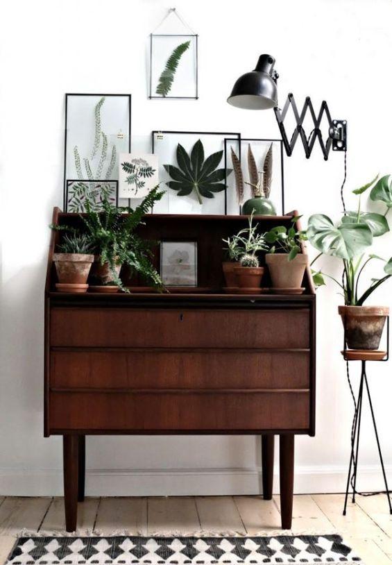 Interior Plants | Dresser Styling: