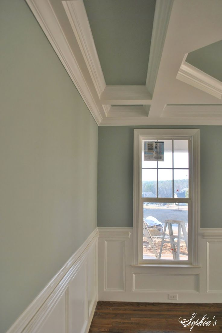 SW Silvermist 7621 Home ColorFlourishPaint