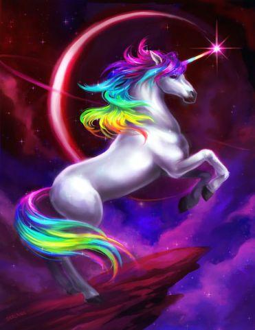 Afbeeldingsresultaat voor unicorns