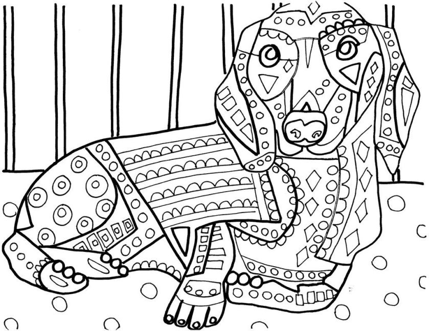heather galler on  dachshunds adult coloring and color