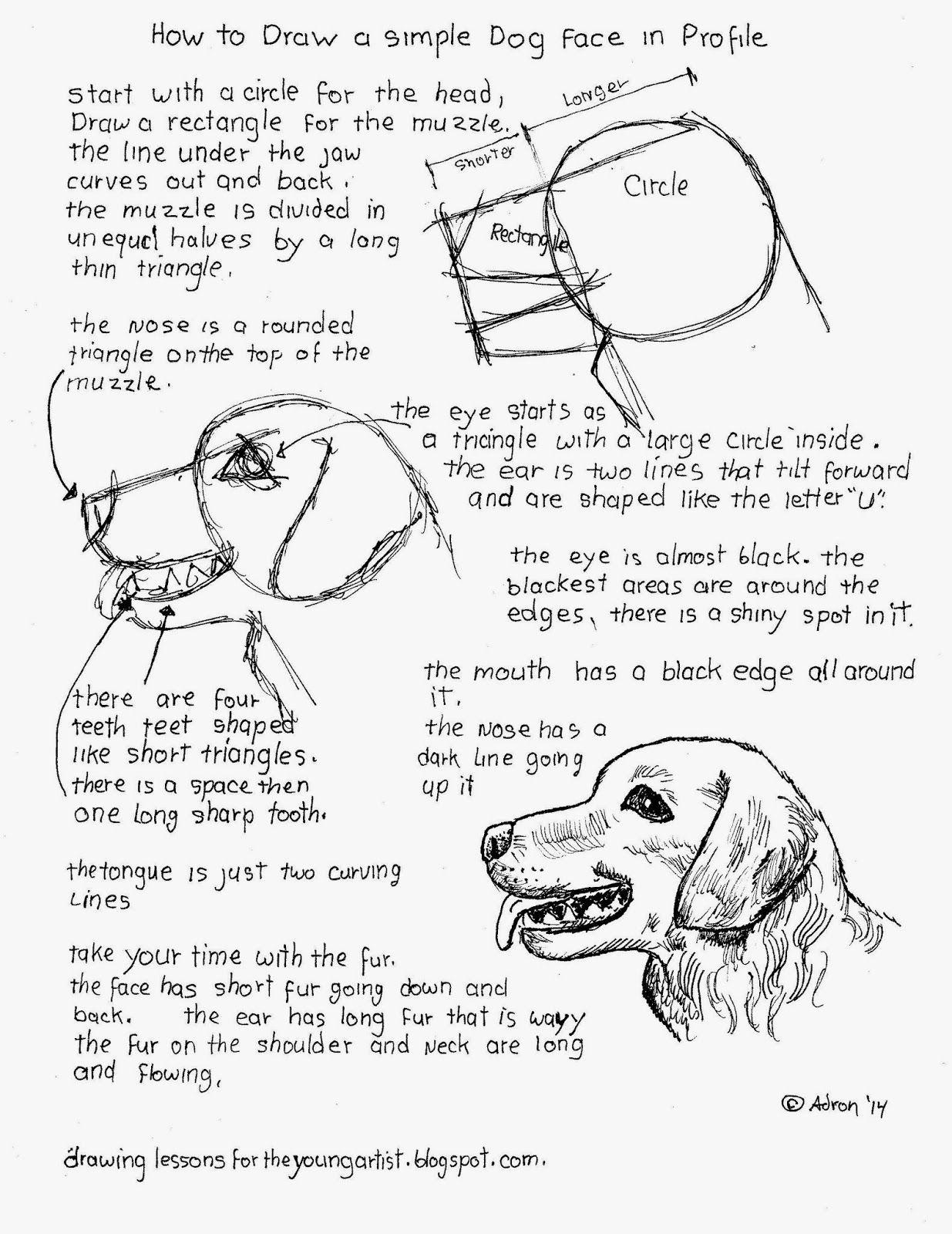 Human Face Drawing Worksheet