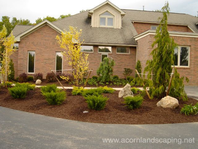Front Yard Walkways #2 - No Grass Front Yard Landscaping ... on Non Grass Backyard Ideas  id=31860