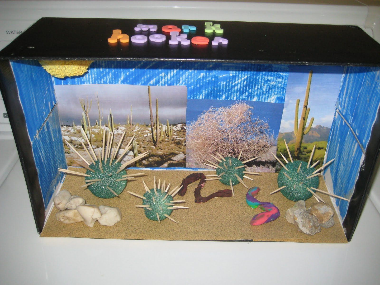 Ecosystem Desert Project Shoebox