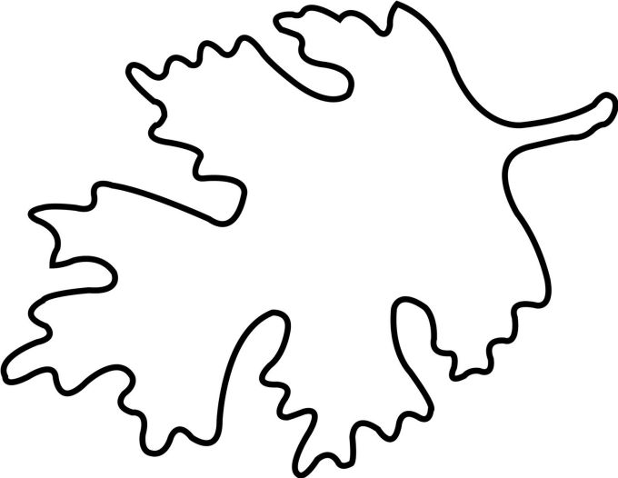 Large Fall Leaf Coloring Page | Zoshwiki.co