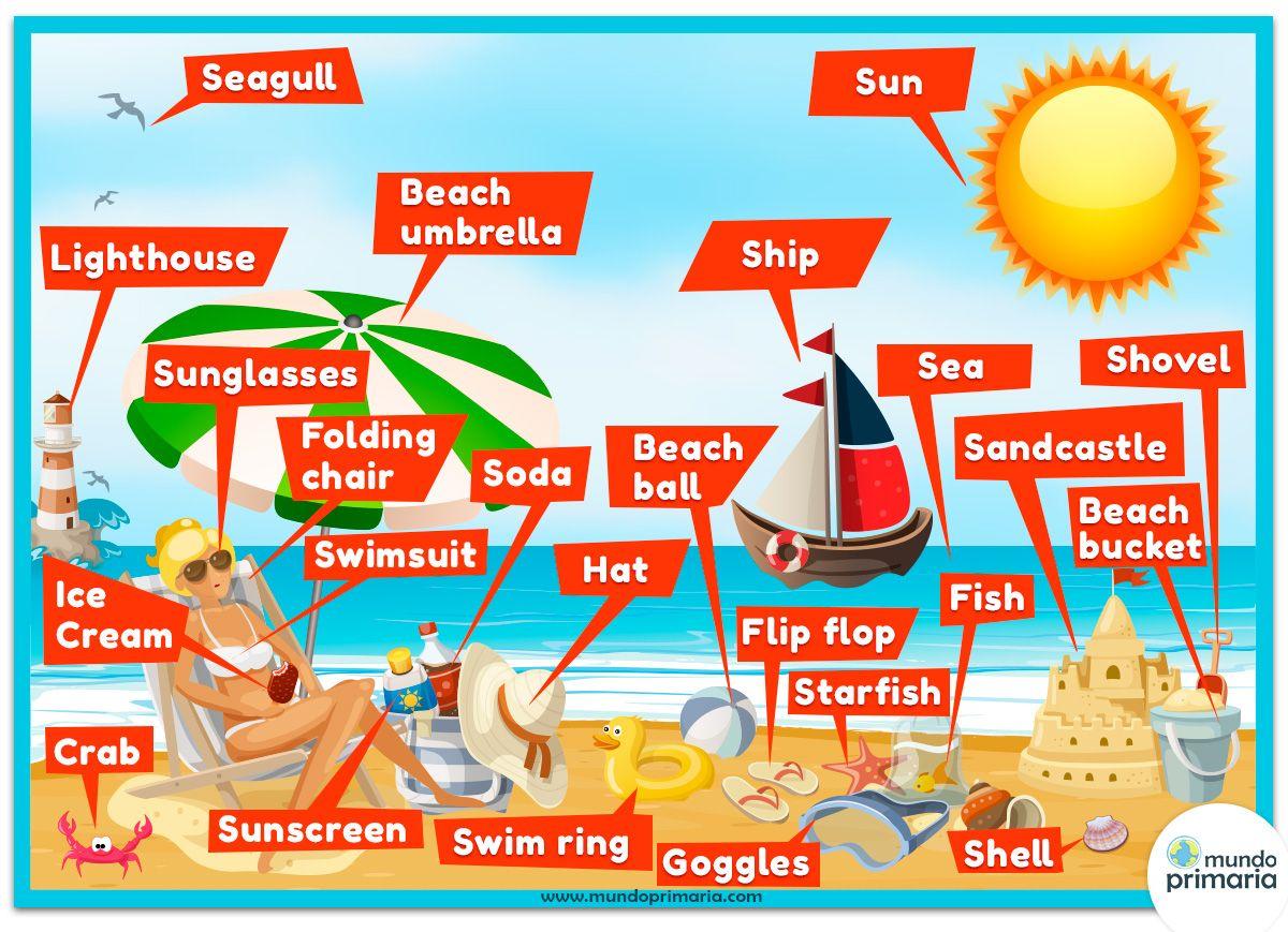Beach Summer Vocabulary