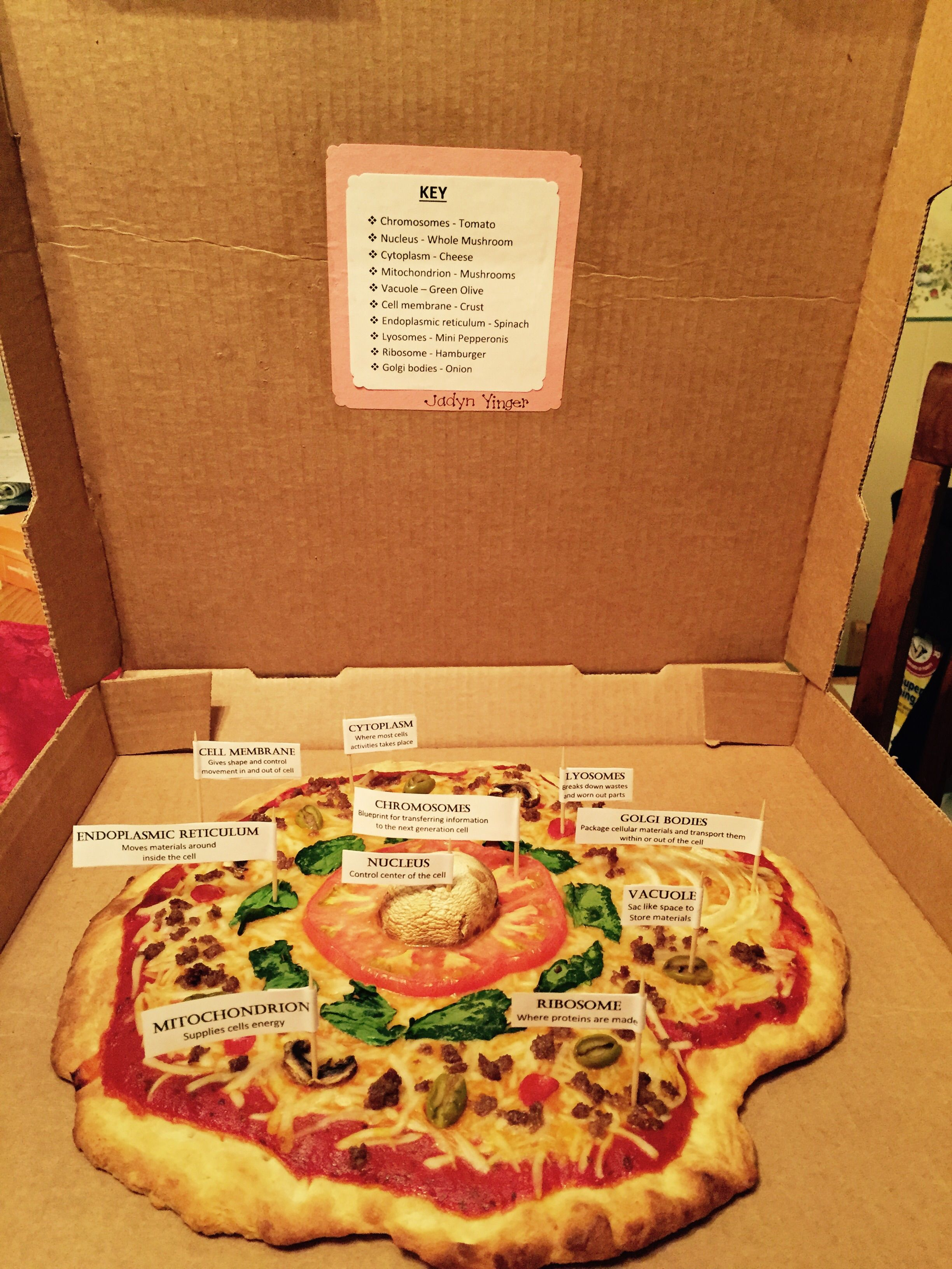 Animal Cell Pizza
