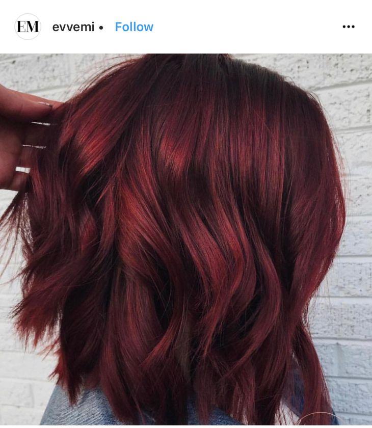 Mulled Wine Hair cut is cute too Hair Pinterest Wine hair
