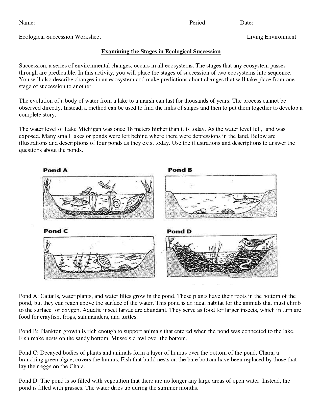 Science Worksheets Ecosystem Biology Worksheet