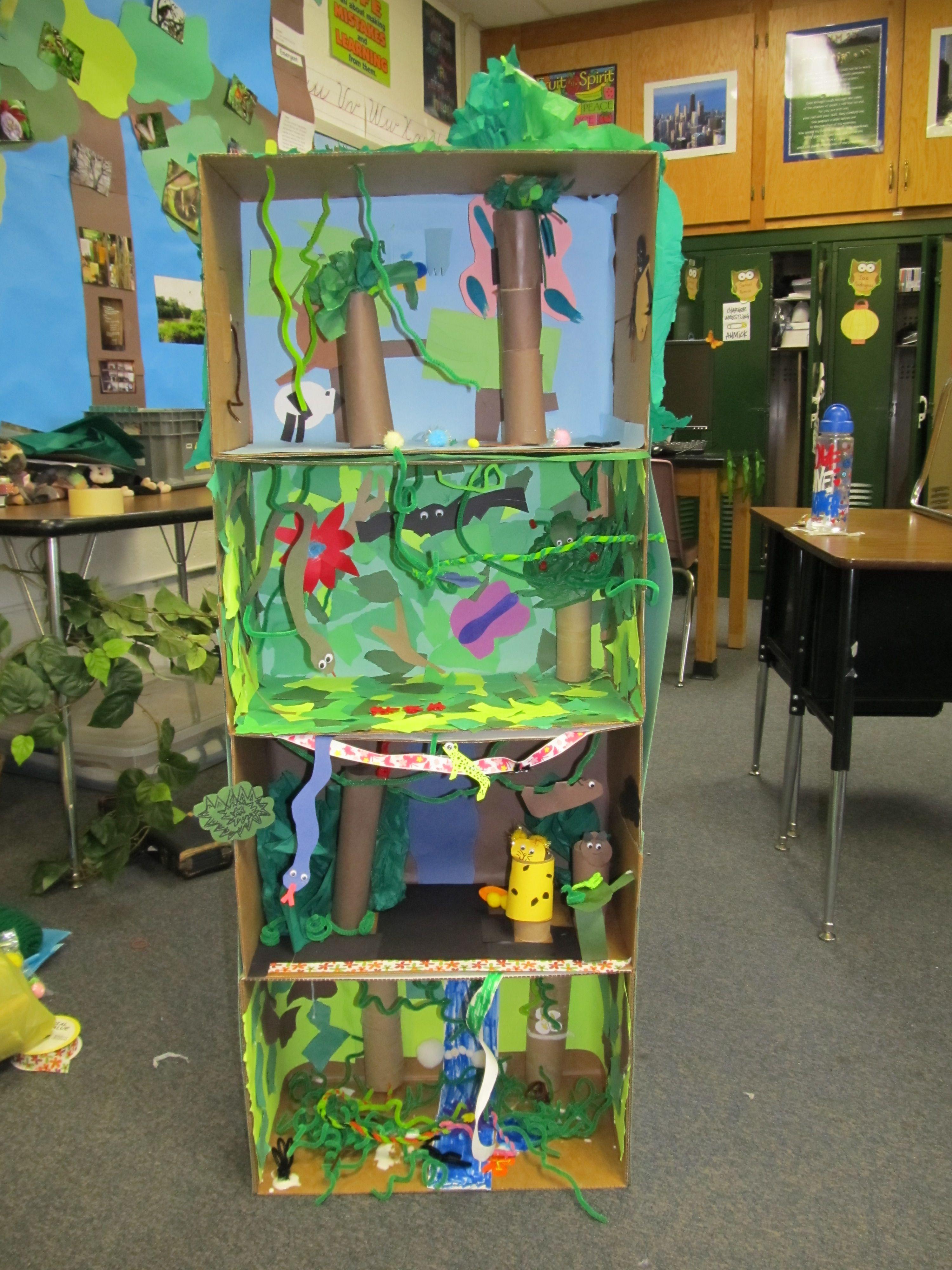 Tropical Rainforest Study Week 1