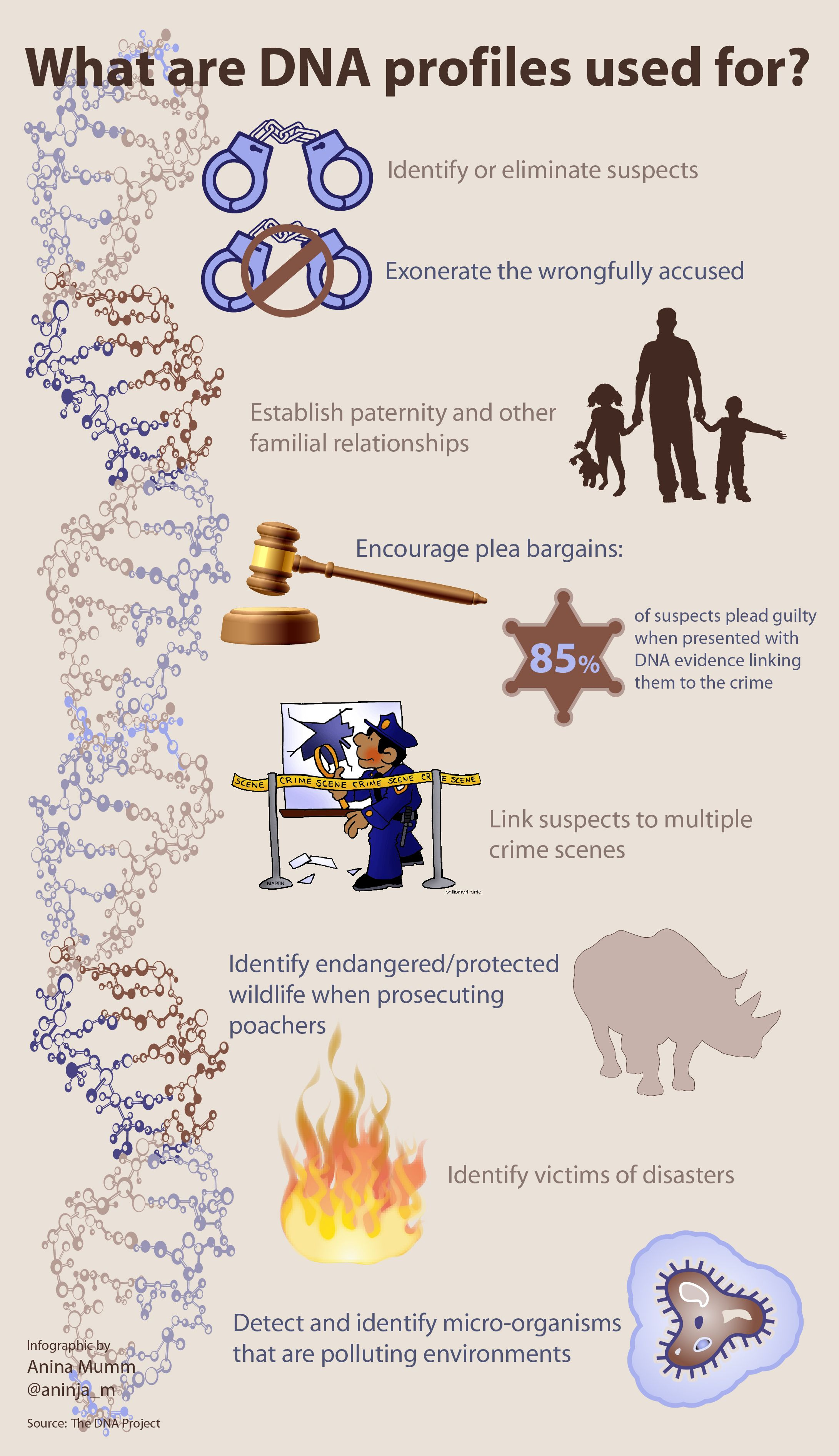 Infographic What Dna Profiles Are Used For Info Courtesy