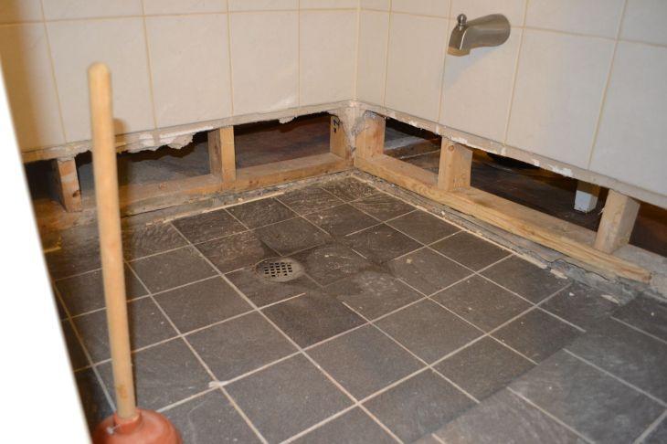 Basement Shower Drain Backing Up  dreamtree  Pinterest