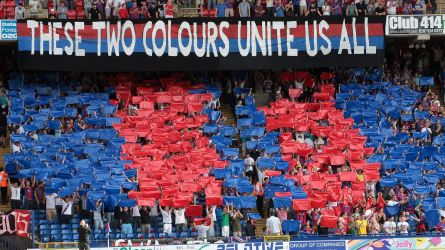 Image result for Crystal Palace fc fans