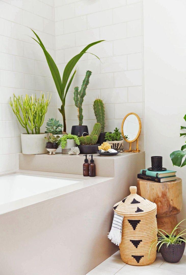 Oui on peut installer des plantes vertes dans sa salle de bains