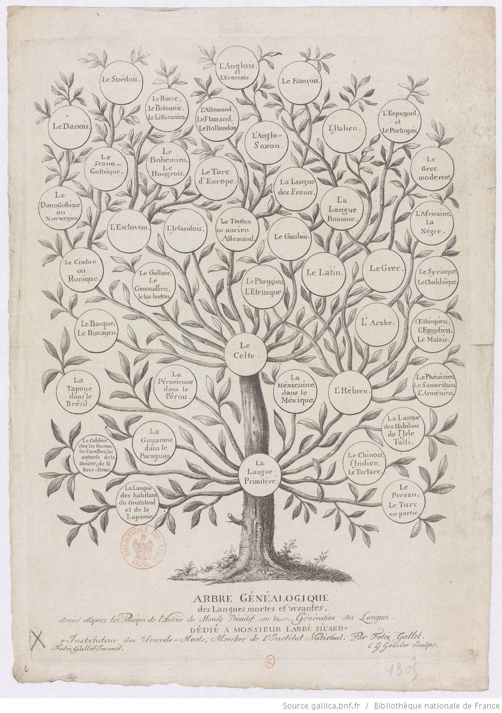 Arbre Genealogique Des Langues Mortes Et Vivantes Dresse D Apres Les Principes De L Auteur Du