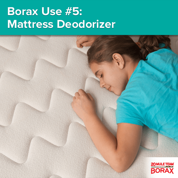 Borax Use 5 Mattress Deodorizer Keep Your Odor Free By Diluting