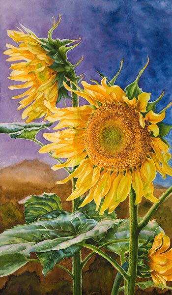Watercolor demonstration of sunflowers by artist Lisa Hill ...