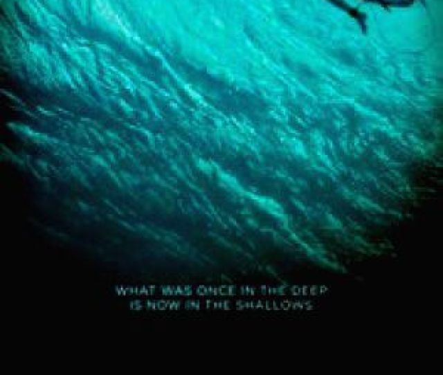 Come On Download Sex Cinemagz The Shallows The Shallows English Complete Film Online For Free Download