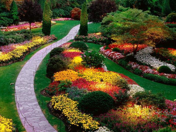 beautiful flower gardens pinterest Beautiful Flower Garden - beautiful walkway | http