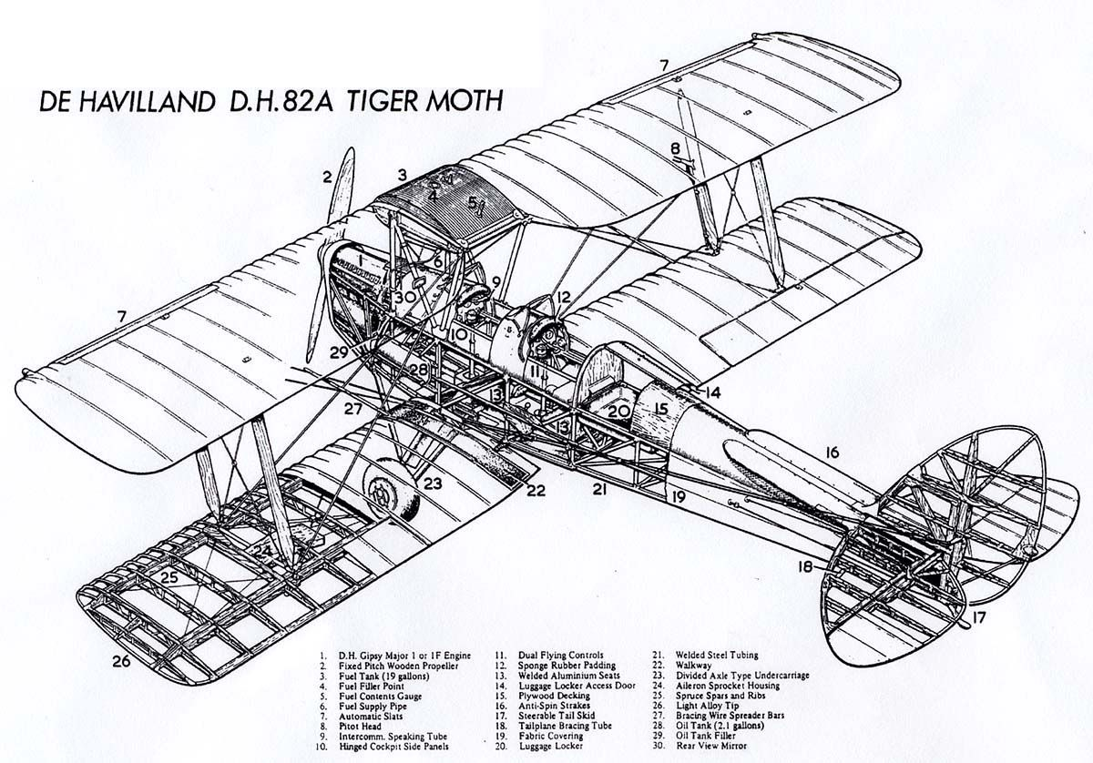 De Havilland D H 82a Tiger Moth Cutaway