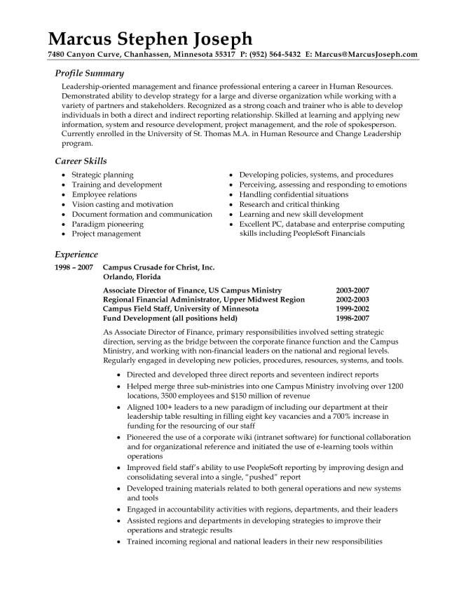 professional resume summary statement examples writing sample - Example Of Professional Summary For Resume