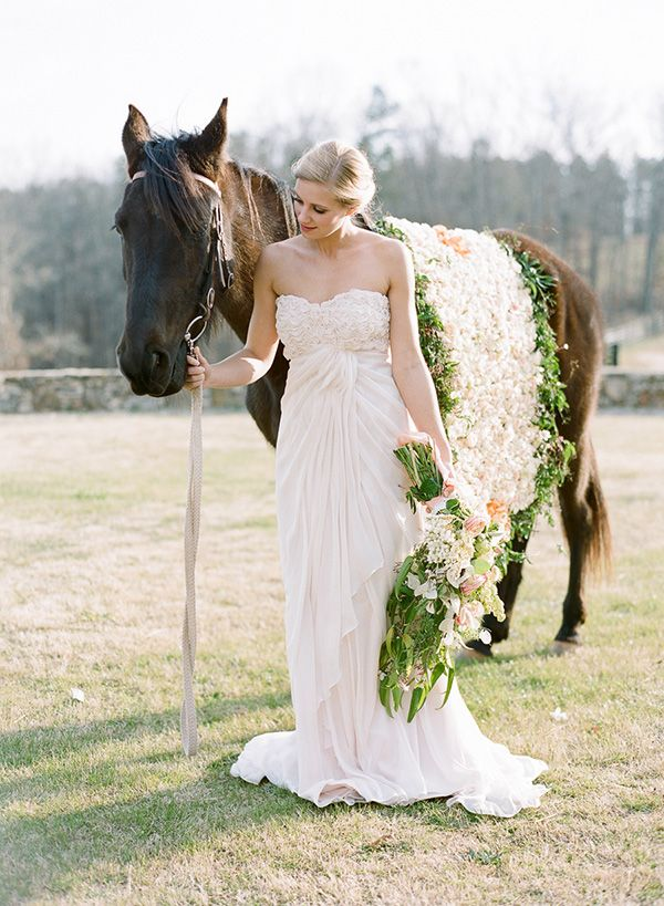 Image result for bride and horse