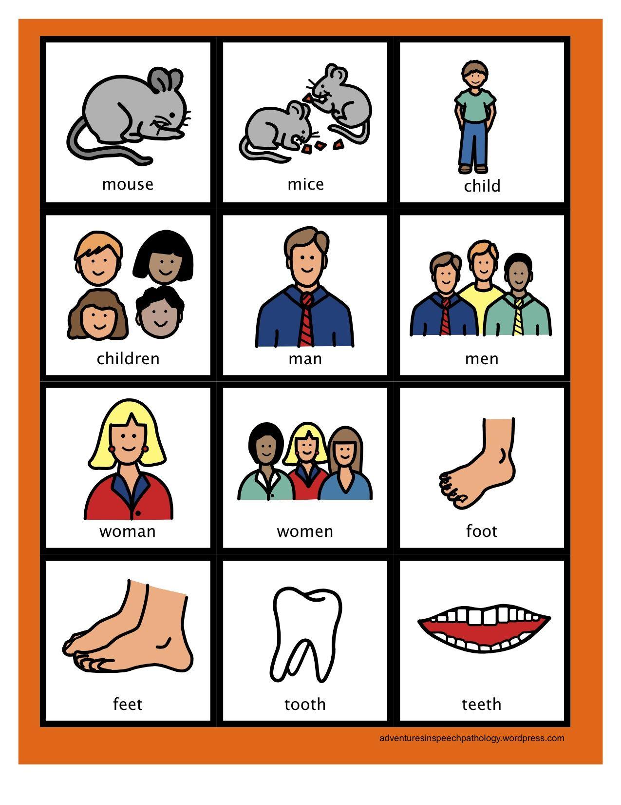 Irregular Plural Noun Cards Freebie