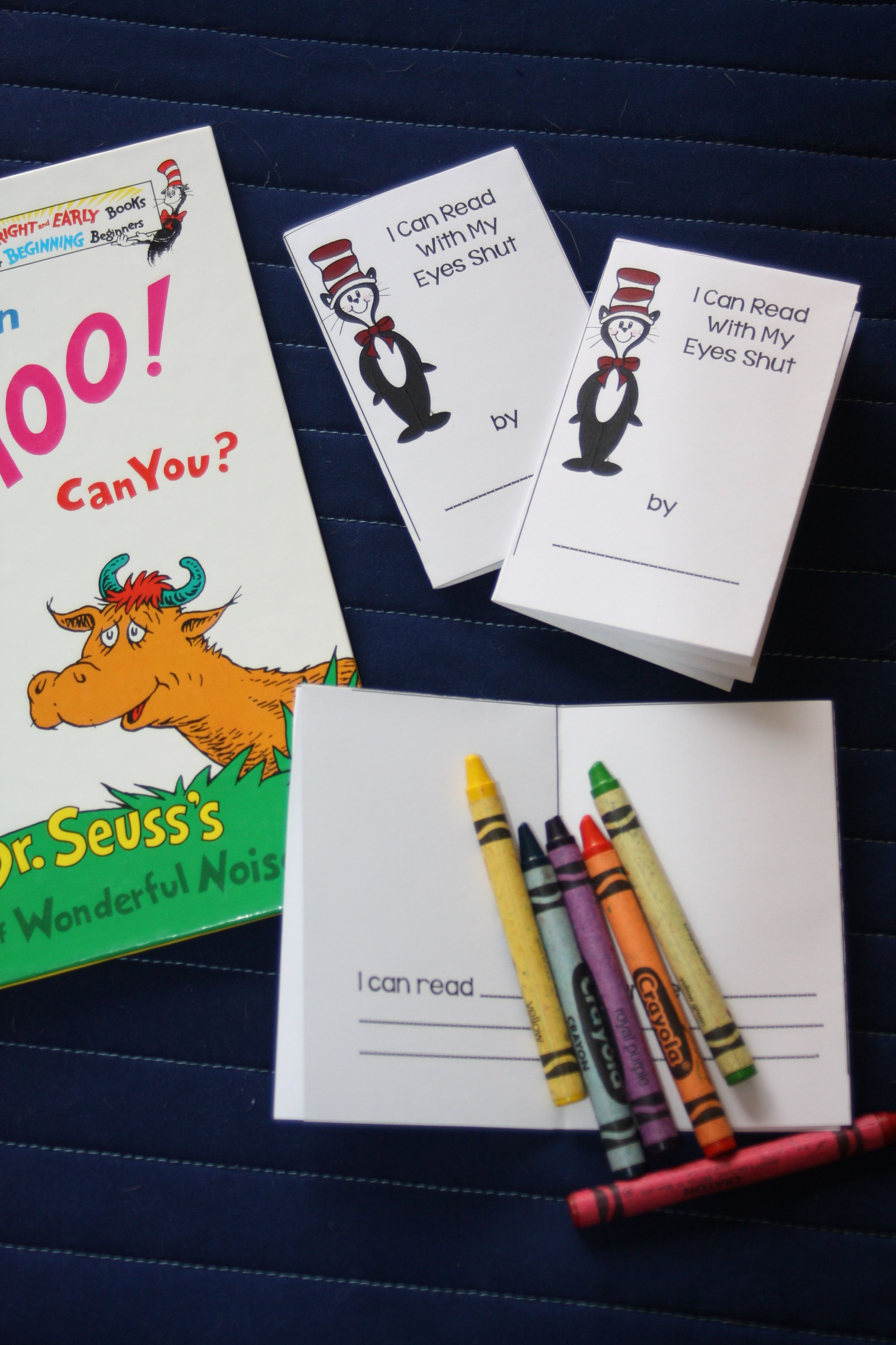 Dr Seuss I Can Read With My Eyes Shut Book Activities