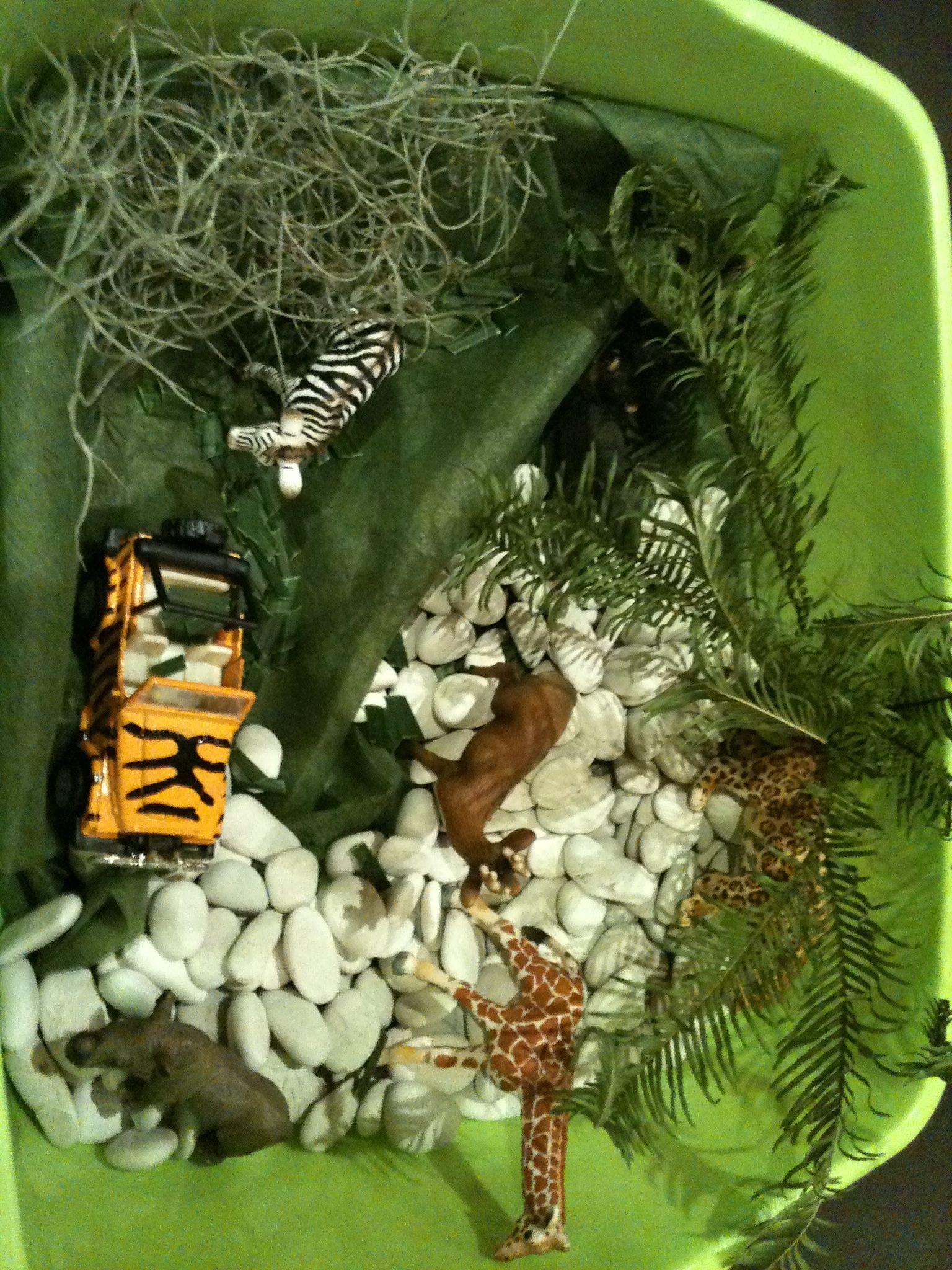 Jungle Sensory Bin