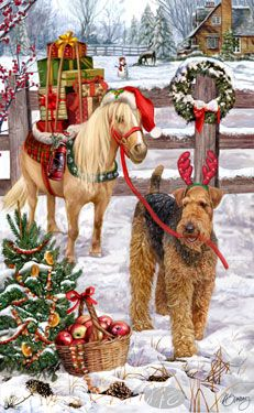 Shop For Cards Airedale Terrier Airedale Terrier