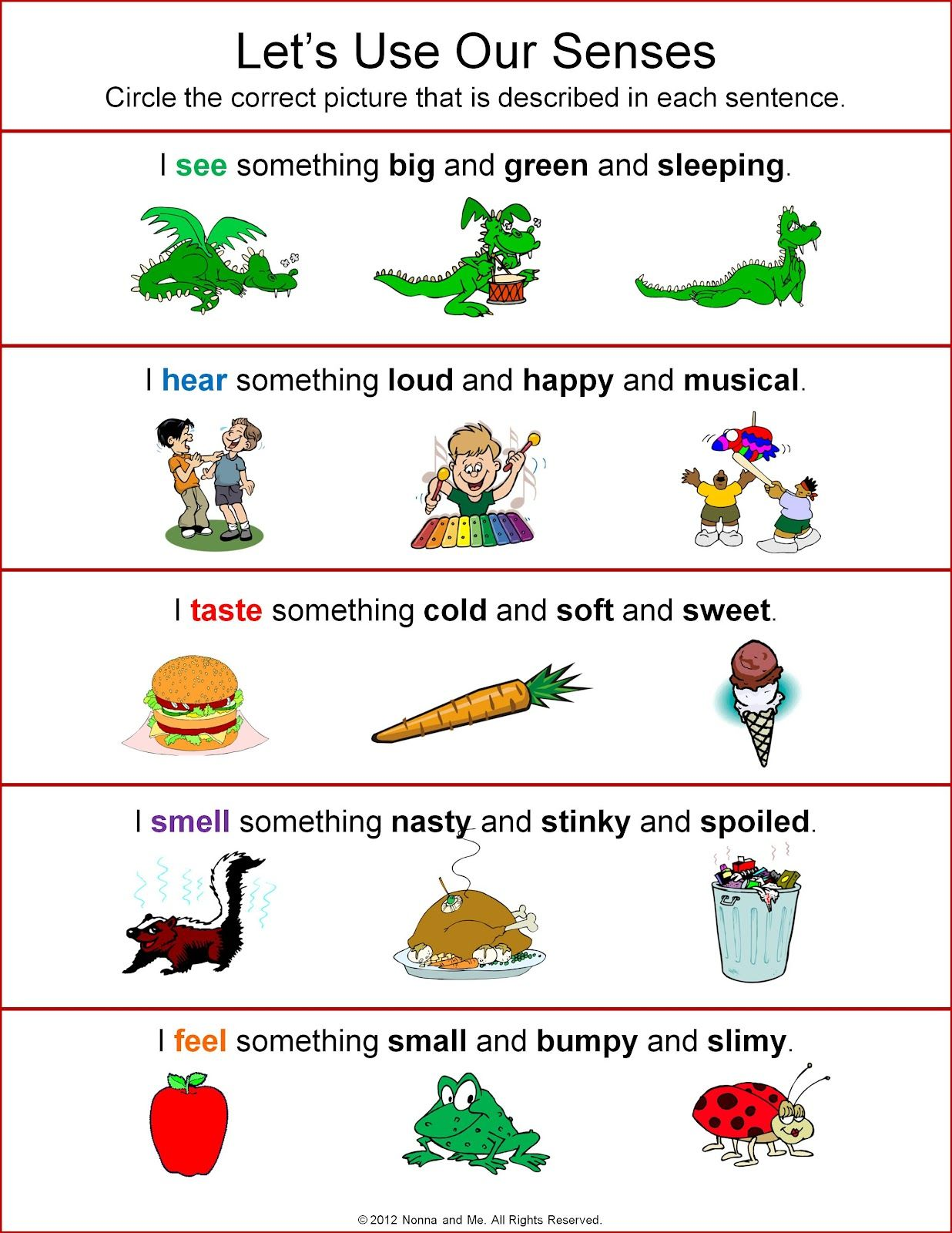 Our Five Senses Worksheets