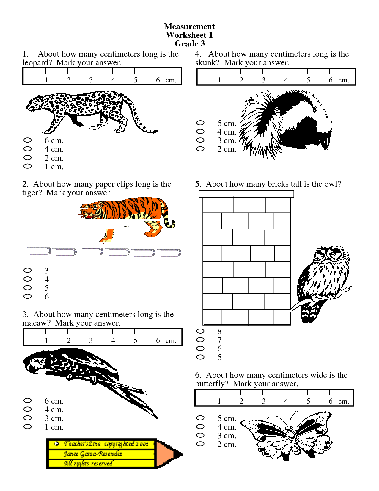 Measurement Worksheets Grade 2