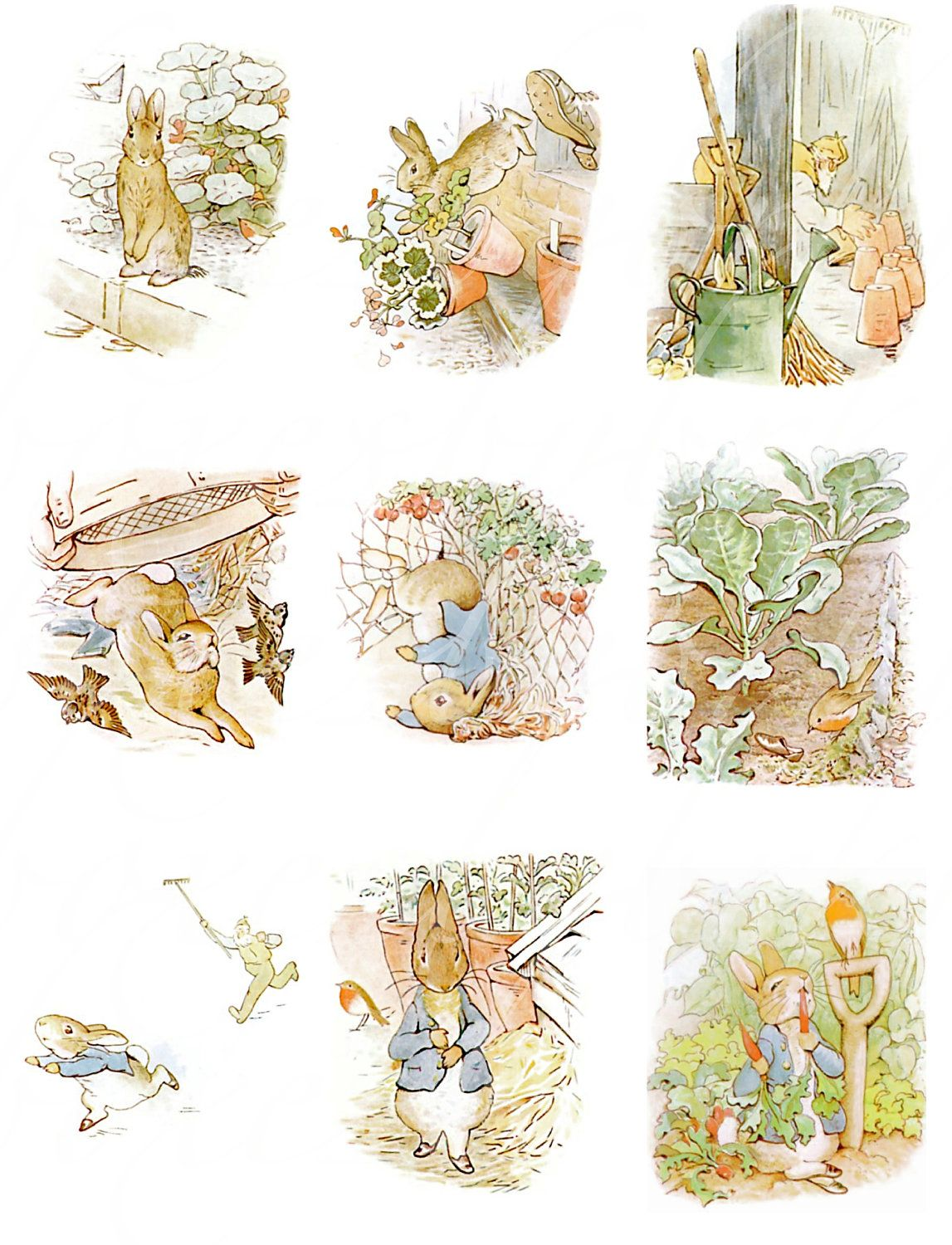24 Antique Peter Rabbit Images From The Tale Of Peter Rabbit By Beatrix Potter Digital Collage