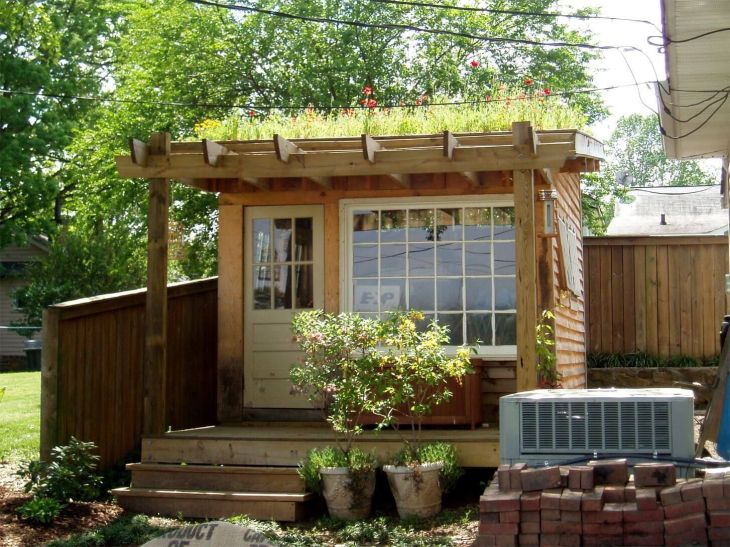 green roof sheds quickly come alive in the garden Green roofs