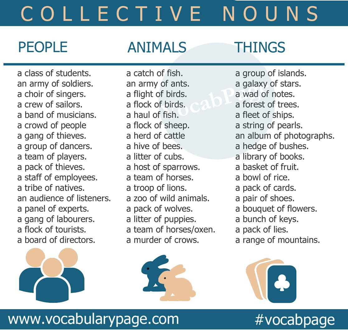 Collective Nouns English Vocabularypage