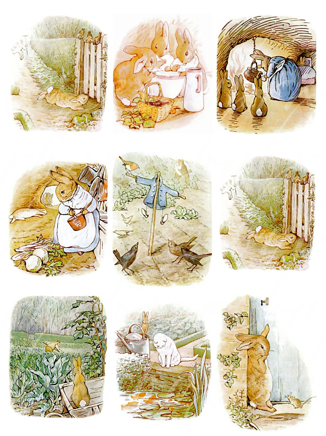 Instant Download Of 24 Peter Rabbit Images From By Boxesbybrkr 3 50
