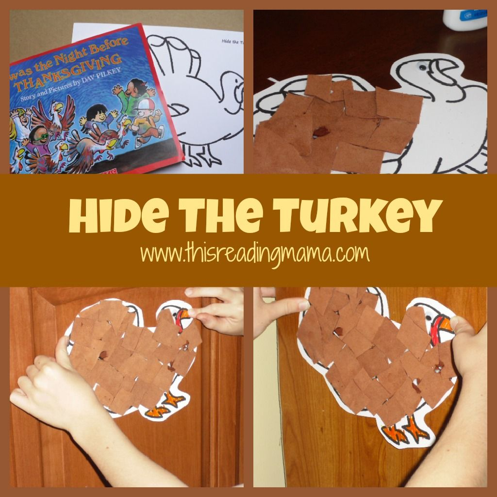 Hide The Turkey Camouflage Science Lesson