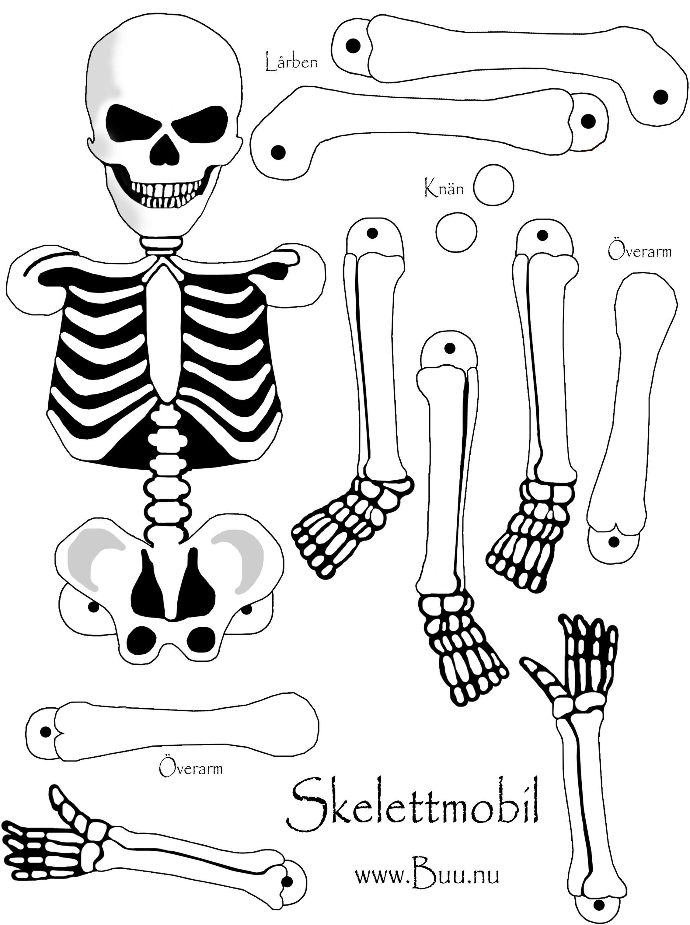 Bildresultat For Halloween Pyssel Skelett