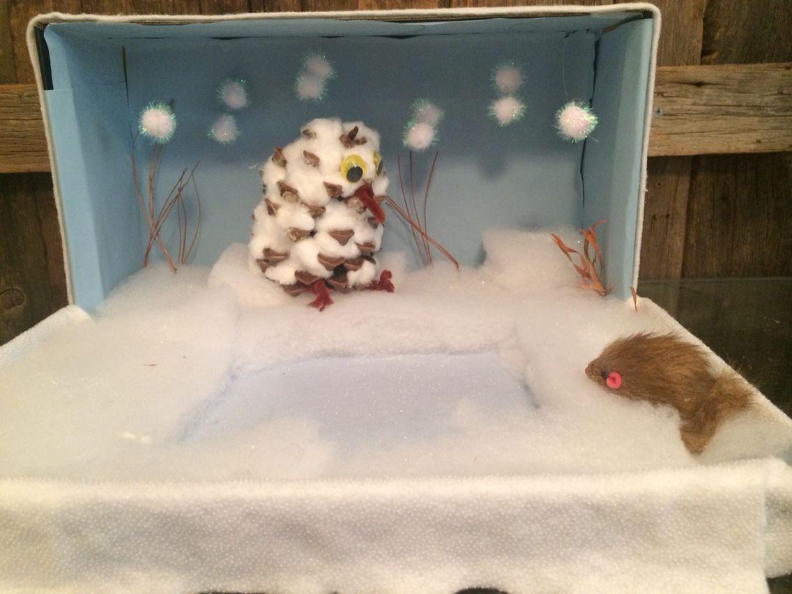 Snowy Owl Diorama By Simone Jackson