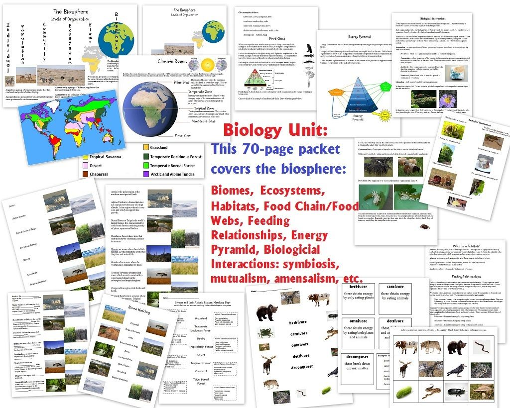 Biology Unit On The Biosphere Biomes Ecosystems