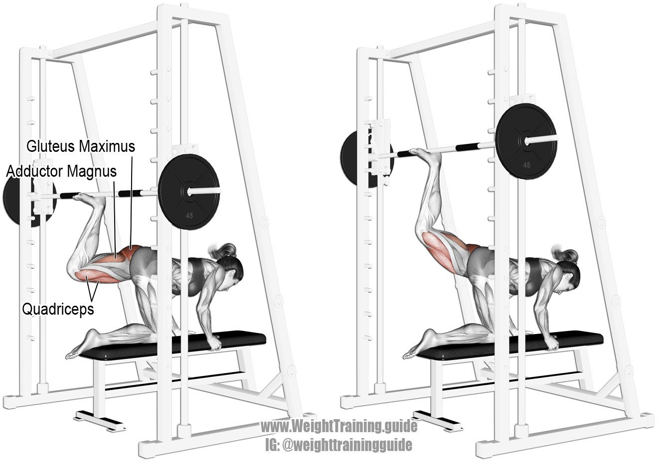 Smith Machine Kneeling Rear Kick Aka Kickback Or Donkey