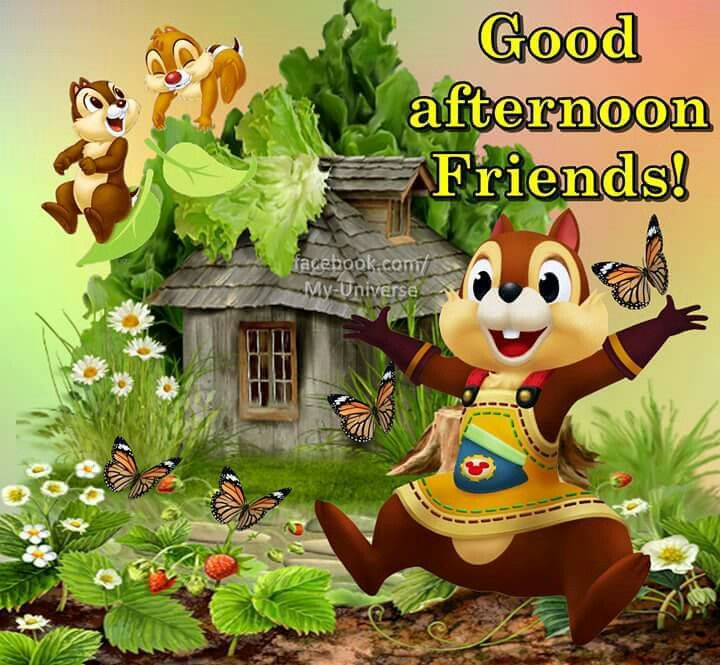 Good Afternoon Friends Pictures Photos And Images For