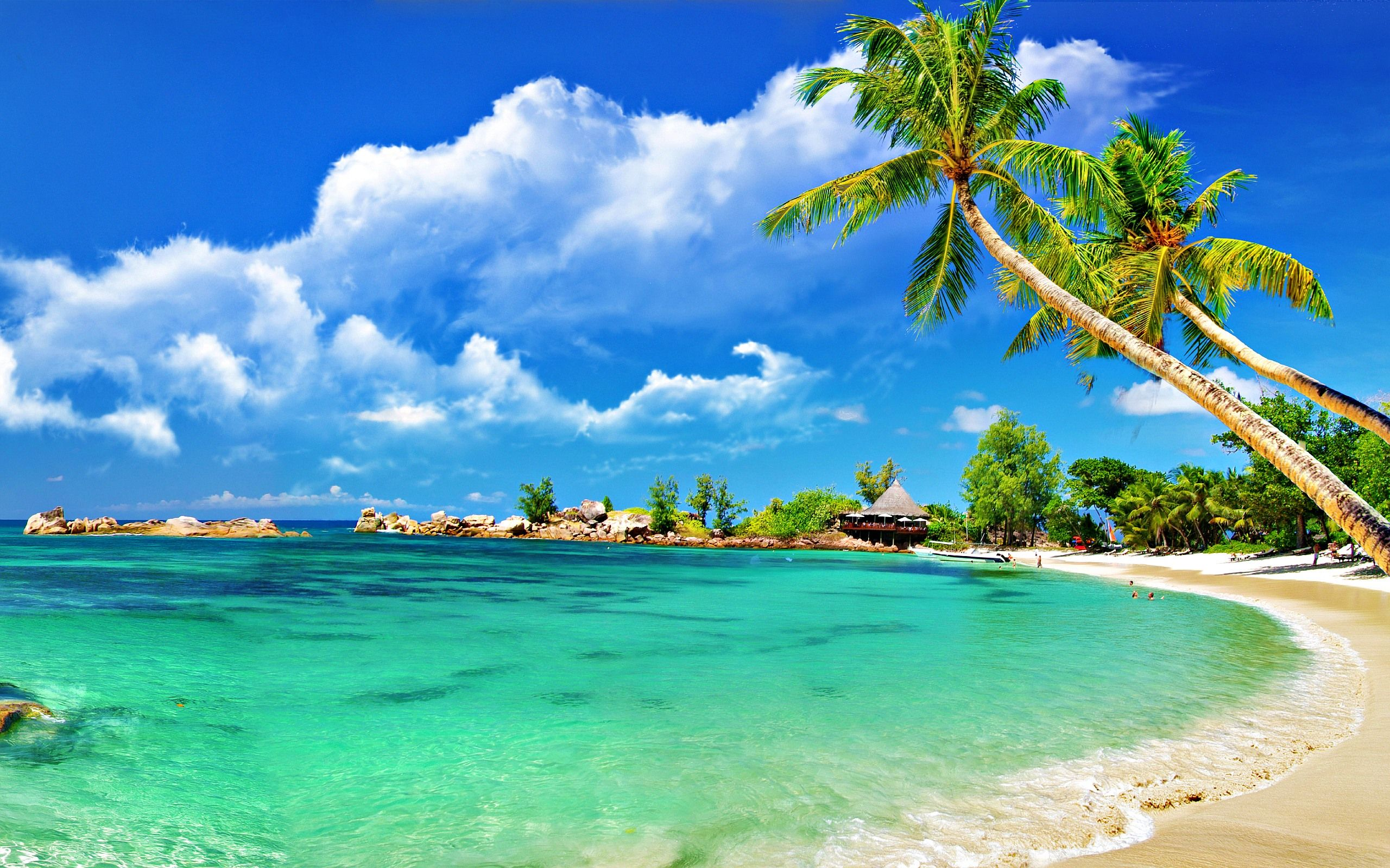 50 amazing beach wallpapers free to download | beach wallpaper