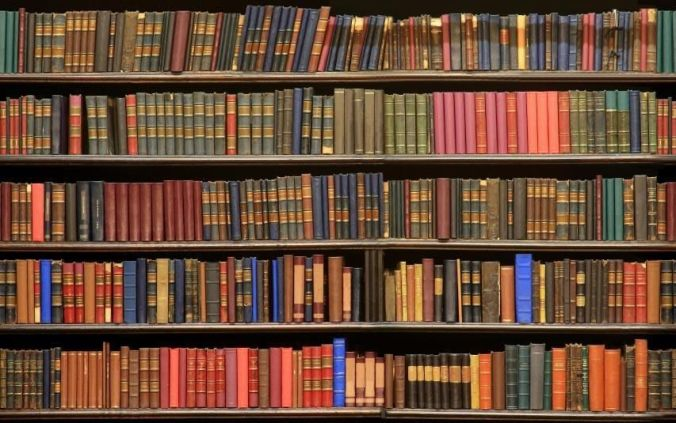 Image result for Library shelves with books