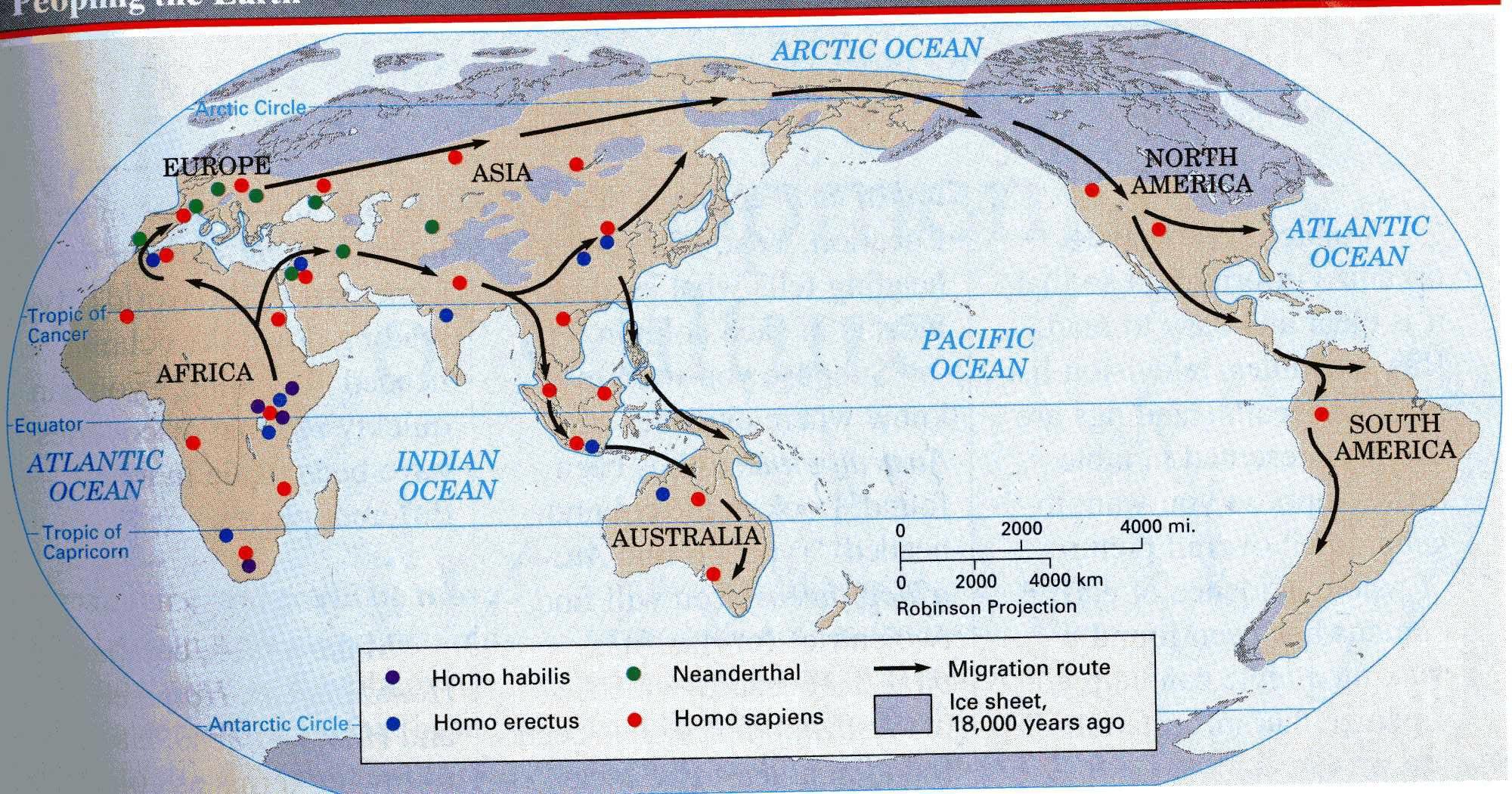 Homo Erectus Leaves Africa